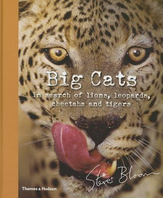 Big Cats By Bloom, Steve